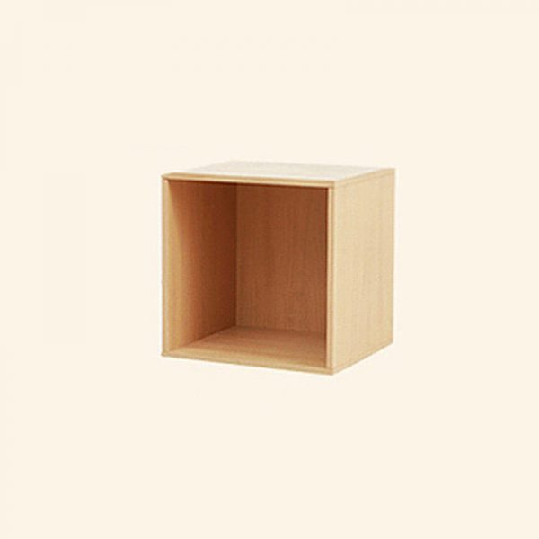 Cubic Organizer without Door